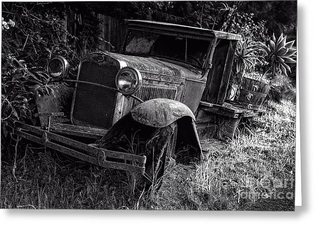 Ford Model T Car Greeting Cards - Old Model T Ford in the Jungle Maui Hawaii Greeting Card by Edward Fielding
