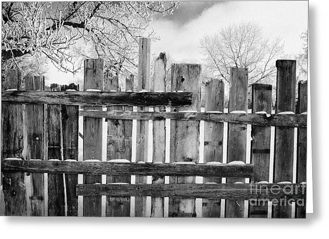 Harsh Conditions Greeting Cards - old patched up wooden fence using old bits of wood in snow Forget Saskatchewan Canada Greeting Card by Joe Fox