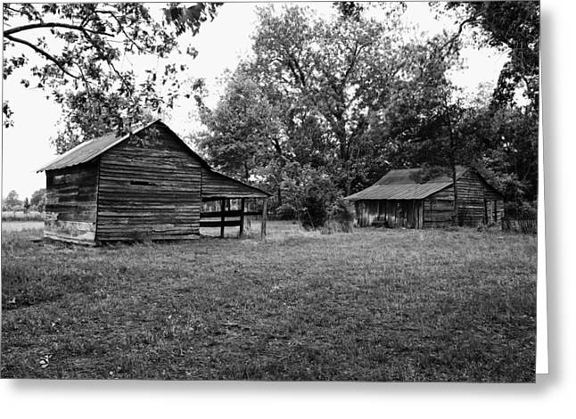 Rundown Barn Greeting Cards - Old Shed and Barn - Alabama Greeting Card by Mountain Dreams