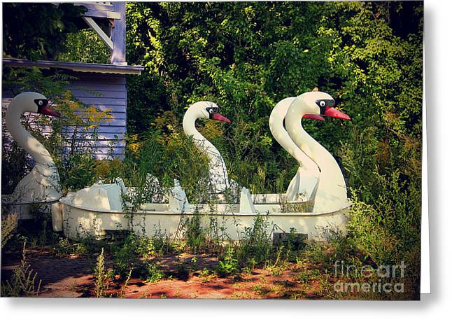 Art Photography Greeting Cards - Old swan boats in Plaenterwald Berlin Greeting Card by Art Photography