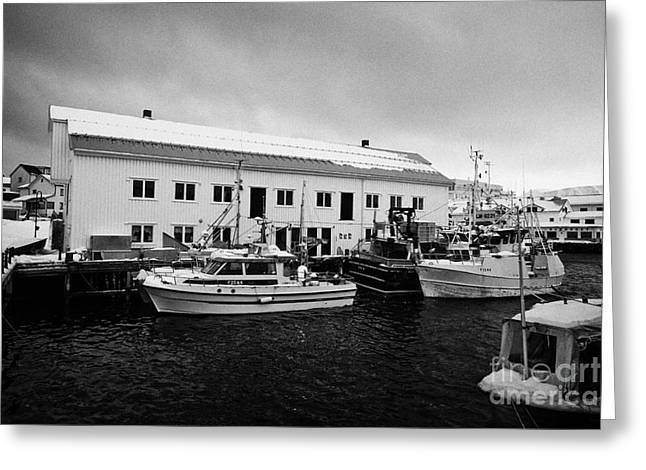 Honningsvag Greeting Cards - old warehouses and small fishing boats Honningsvag harbour finnmark norway europe Greeting Card by Joe Fox
