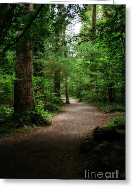 Garden Scene Digital Art Greeting Cards - Old Welsh Country Walk Greeting Card by Michael Braham