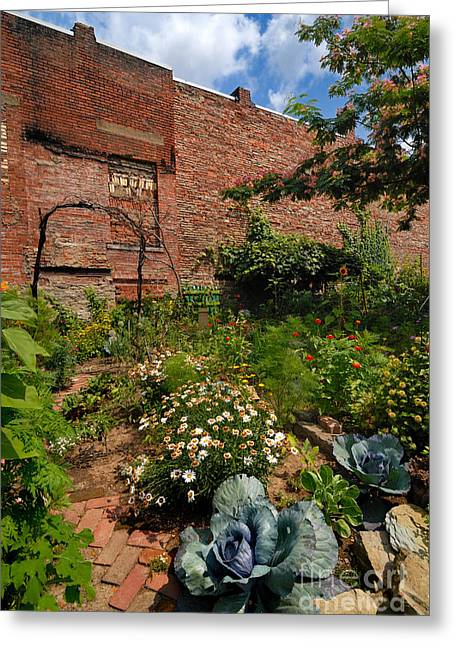 Community Greeting Cards - Olde Allegheny Community Gardens Greeting Card by Amy Cicconi
