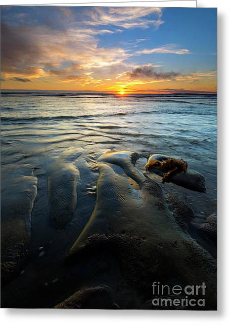 Oregon Coast Greeting Cards - On the Horizon Greeting Card by Mike  Dawson