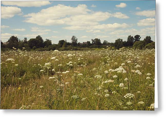 Village Life Greeting Cards - On the Summer Meadow. Russia Greeting Card by Jenny Rainbow