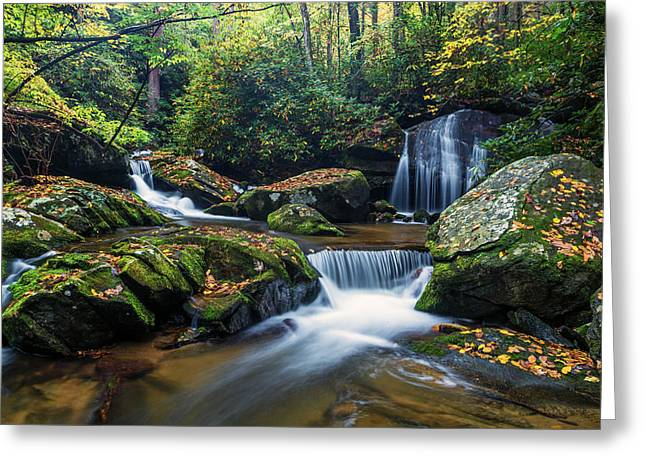 Color Yellow Greeting Cards - On the way to Catawba Falls Greeting Card by Andres Leon