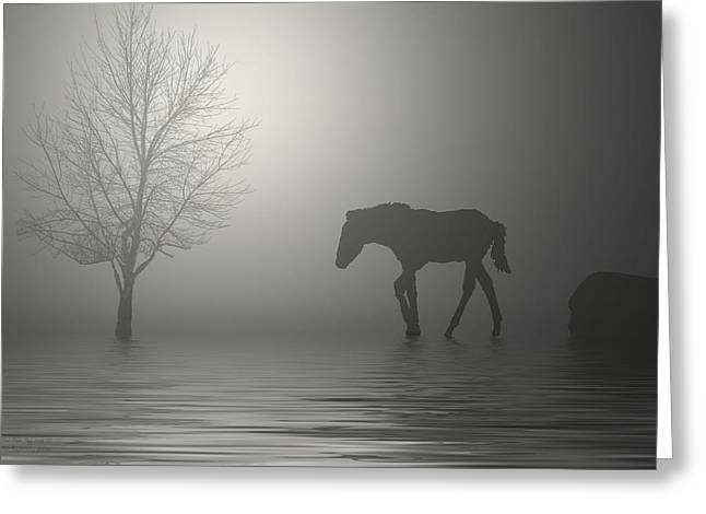 Equine Posters Greeting Cards - One is a Lonely Number Greeting Card by George Lenz