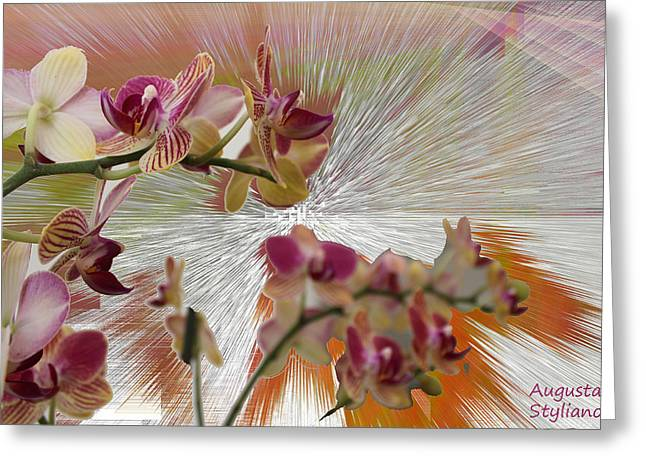 Photo Gallery Digital Greeting Cards - Orchid Flower Greeting Card by Augusta Stylianou