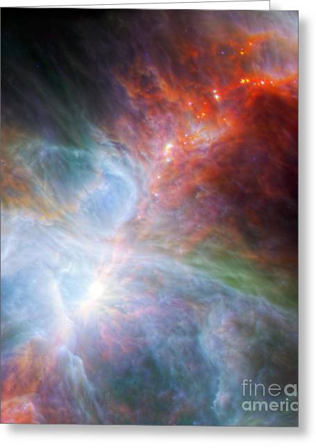 Interstellar Space Photographs Greeting Cards - Orion Nebula Greeting Card by Science Source