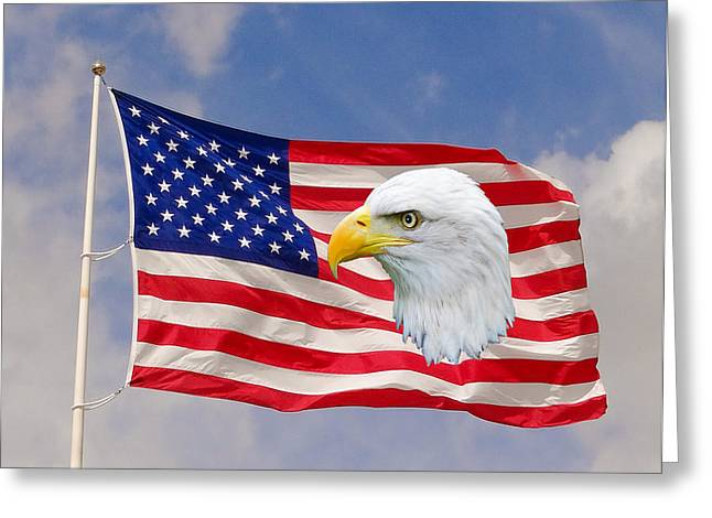 National Guard Mixed Media Greeting Cards - Our Flag Greeting Card by Dennis Dugan