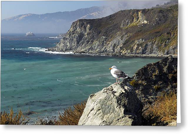 Coast Highway One Greeting Cards - Pacific Coast Hwy     California Greeting Card by Willie Harper