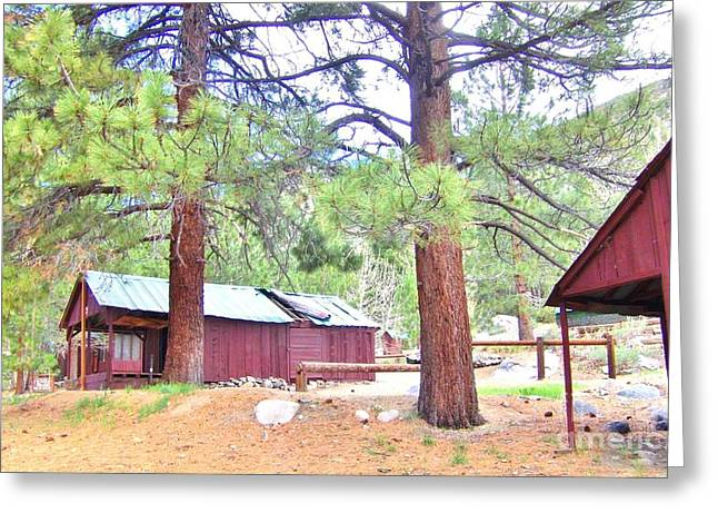 Big Pine Country Greeting Cards - Pack Station Greeting Card by Marilyn Diaz