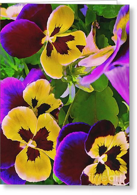 Viola Tricolor Greeting Cards - Painterly Purple Pansy Greeting Card by Peter Piatt