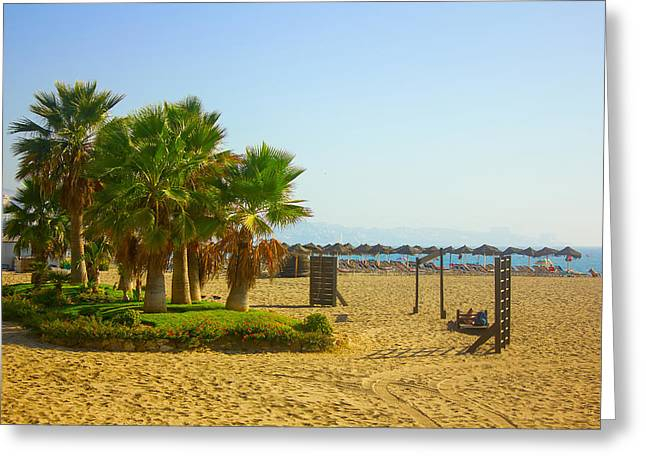 Beach Scenery Pyrography Greeting Cards - Palm trees on a beach in Fuengirola Greeting Card by Dragomir Nikolov