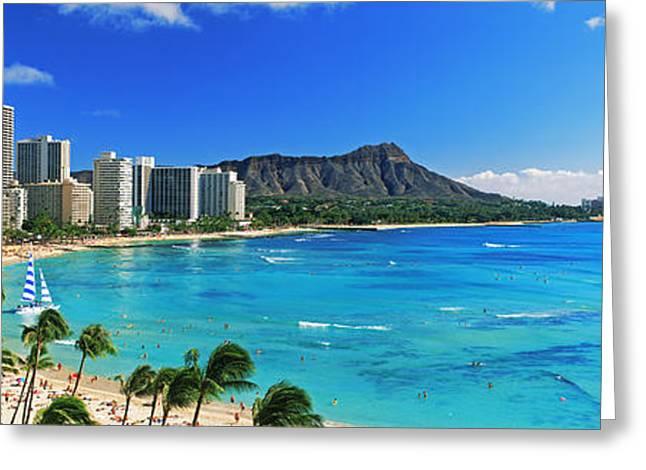 Ocean Images Greeting Cards - Palm Trees On The Beach, Diamond Head Greeting Card by Panoramic Images