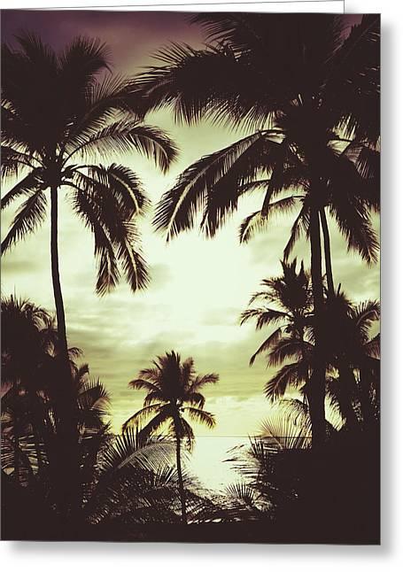Puerto Vallarta Digital Greeting Cards - Palmeras de Vallarta Greeting Card by Natasha Marco