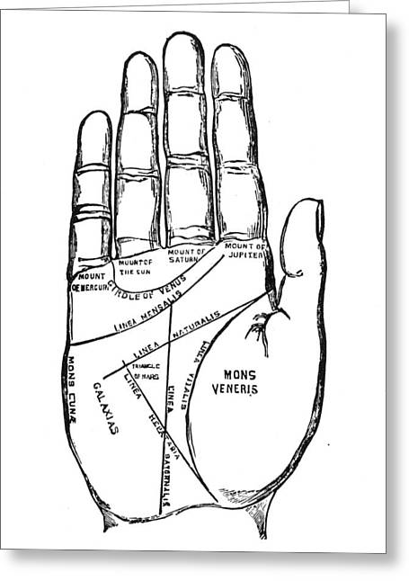 Palmistry Greeting Cards - Palmistry Chart, 1885 Greeting Card by Granger