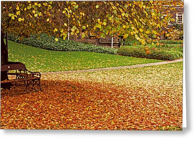 Avon Greeting Cards - Park At Banks Of The Avon River Greeting Card by Panoramic Images