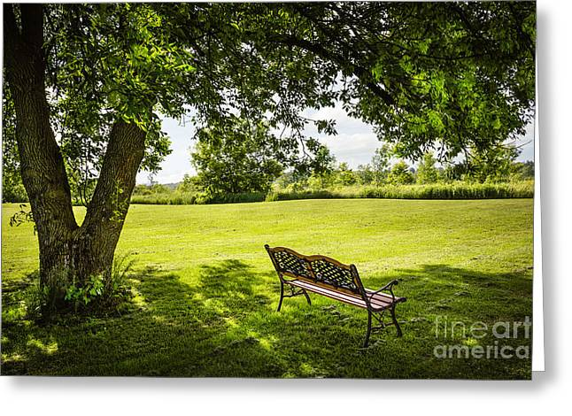 Shade Greeting Cards - Park bench under tree Greeting Card by Elena Elisseeva