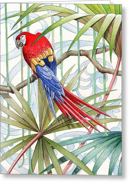 Blue Macaws Greeting Cards - Parrot, 2008 Greeting Card by Jenny Barnard