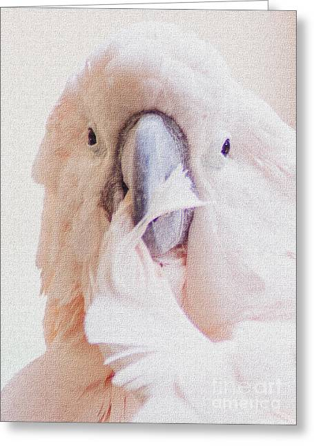 Pretty Cockatoo Greeting Cards - Parrot Flair Greeting Card by Roselynne Broussard