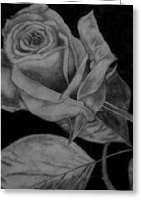 Light And Dark Drawings Greeting Cards - Passion  Greeting Card by Jessica  Jones