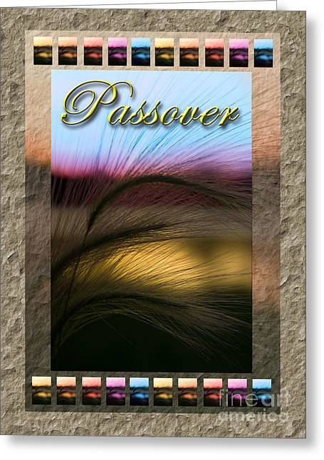 Wildlife Celebration Greeting Cards - Passover Grass Sunset Greeting Card by Jeanette K