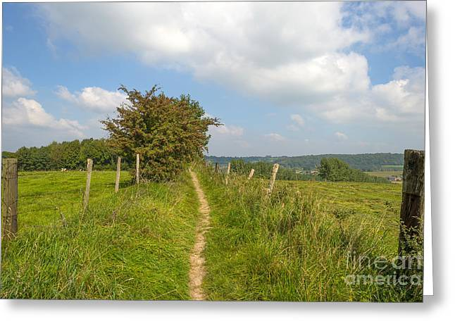 Limburg Greeting Cards - Path through a meadow in summer Greeting Card by Jan Marijs