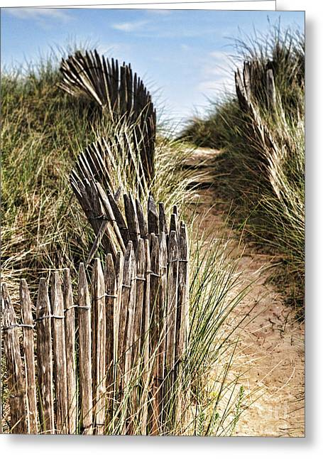 Path Greeting Cards - Path Through Dunes Greeting Card by Colin and Linda McKie