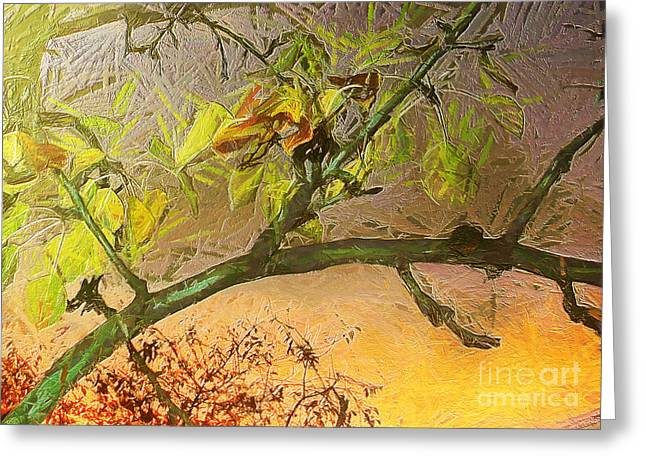 Pear Tree In The Sunset Greeting Card by Odon Czintos