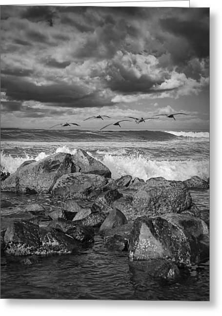 Pelicans Flying Greeting Cards - Pelicans over the surf on Coronado Greeting Card by Randall Nyhof