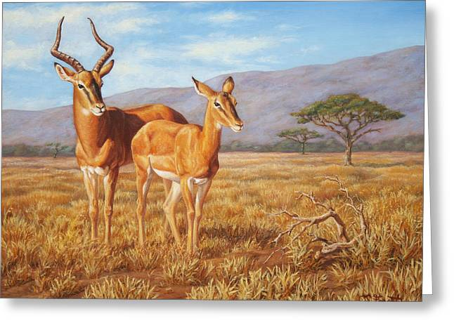 Gazelle Greeting Cards - Persistence Greeting Card by Crista Forest