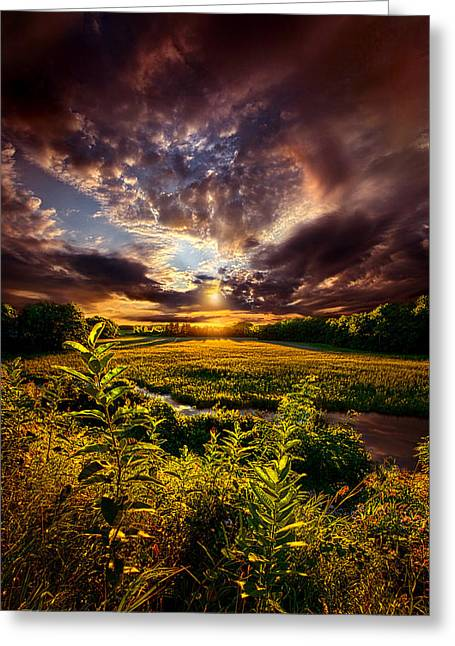 Perspective Greeting Card by Phil Koch