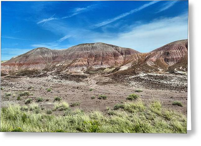 Petrified Forest National Park Greeting Cards - Petrified Forest National Park Greeting Card by Dan Sproul