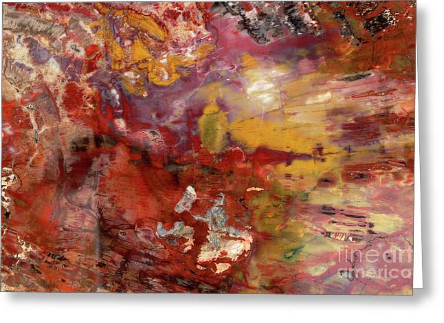 Petrified Wood Detail Greeting Card by