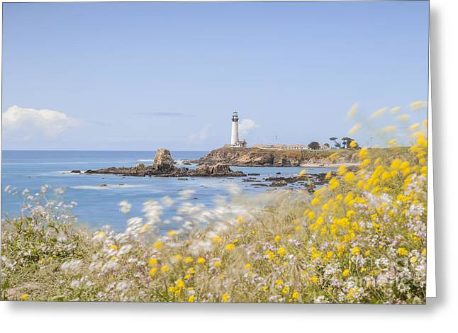 Pigeons Greeting Cards - Pigeon Point Lighthouse California Greeting Card by Colin and Linda McKie