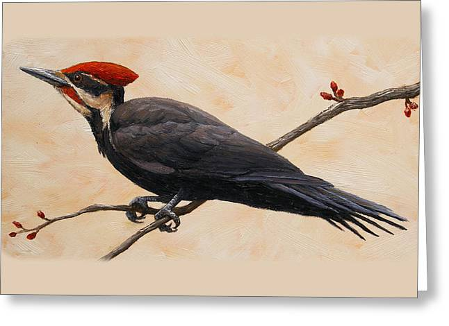 Pileated Woodpeckers Greeting Cards - Pileated Woodpecker Phone Case Greeting Card by Crista Forest