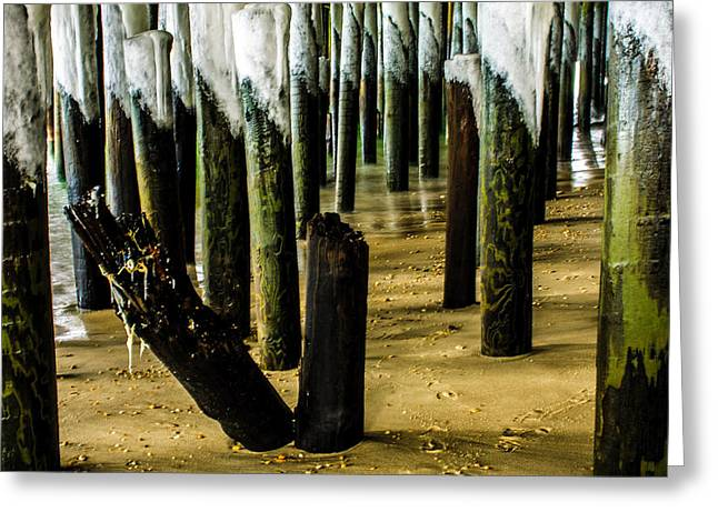 Casino Pier Greeting Cards - Pilings and Ice Greeting Card by Bill Terlecki