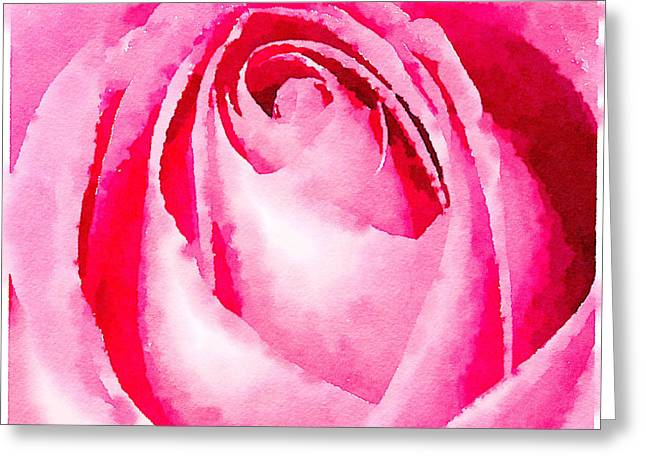 Watercolour Photographs Greeting Cards - Pink rose watercolour Greeting Card by Jane Rix