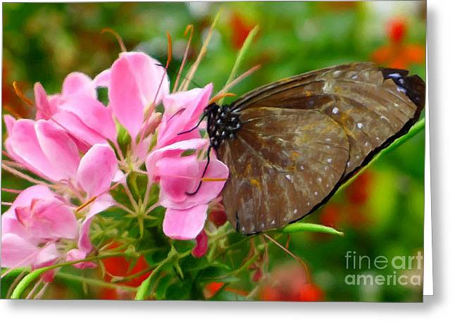 Beauty Greeting Cards - Pink spider flower with butterfly Greeting Card by Lanjee Chee