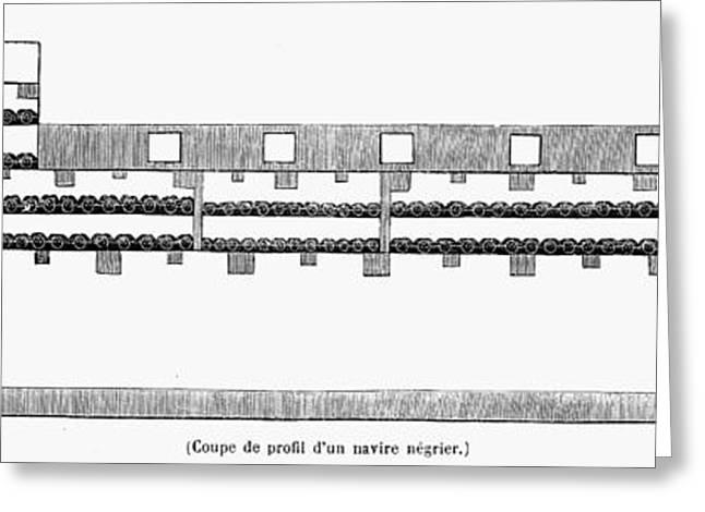 Slaves Greeting Cards - Plan Of Slave Ship Greeting Card by Granger