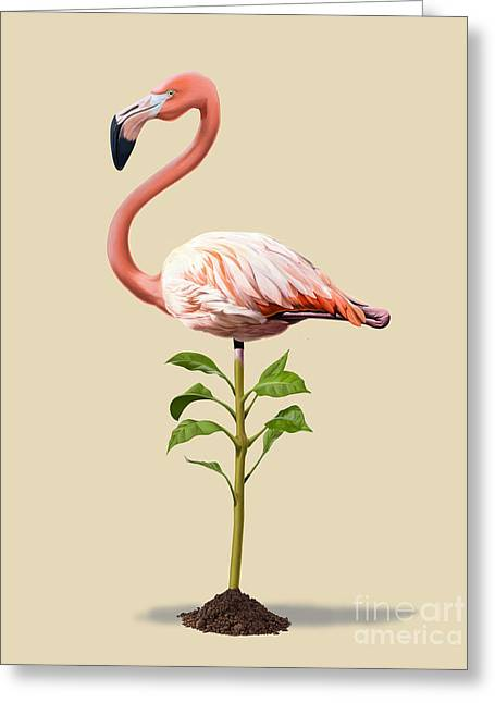 Illustration Greeting Cards - Planted Colour Greeting Card by Rob Snow