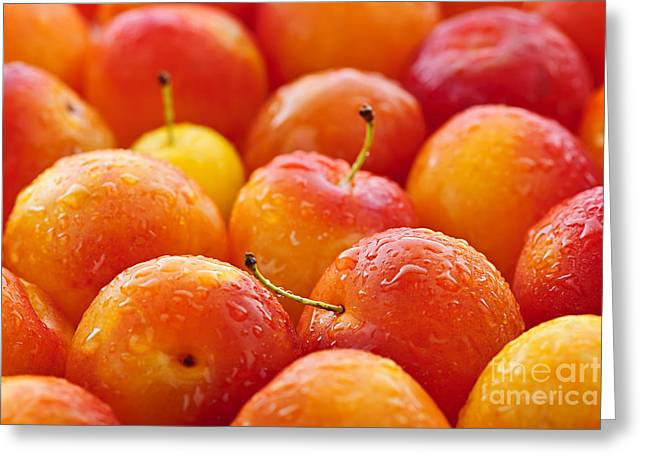 Organic Photographs Greeting Cards - Plums Greeting Card by Elena Elisseeva