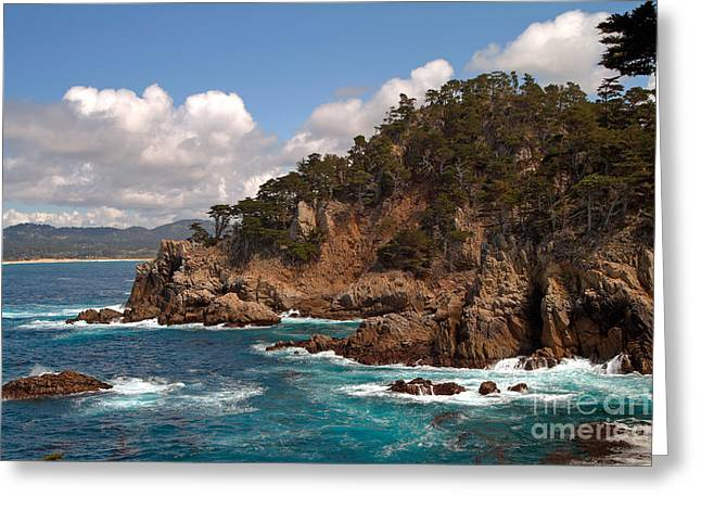 Point Lobos State Greeting Cards - Point Lobos Greeting Card by Charlene Mitchell