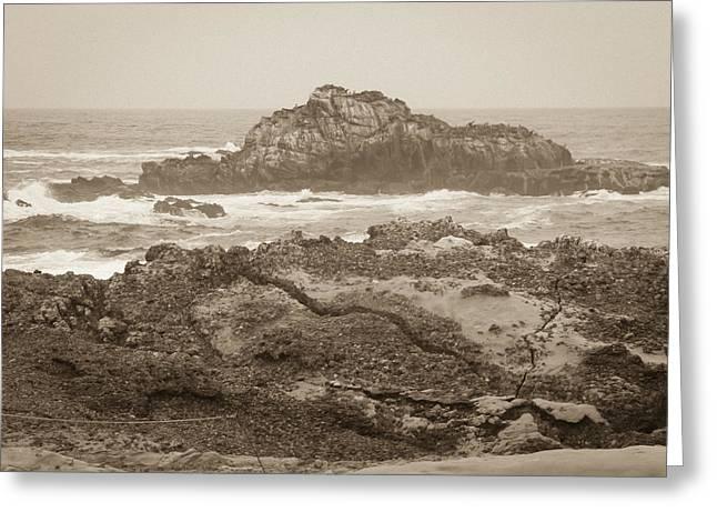 Point Lobos Greeting Cards - Point Lobos Greeting Card by John Carey