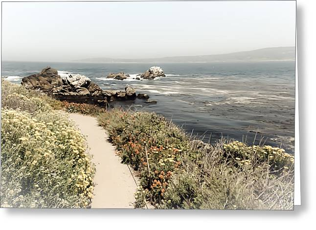 Point Lobos State Greeting Cards - Point Lobos State Reserve Greeting Card by June Damanti