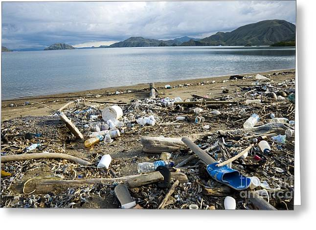 Human Degradation Greeting Cards - Polluted Beach, Komodo Island, Indonesia Greeting Card by Georgette Douwma