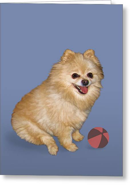 Toy Dog Greeting Cards - Pomeranian with Ball Greeting Card by Delores Knowles
