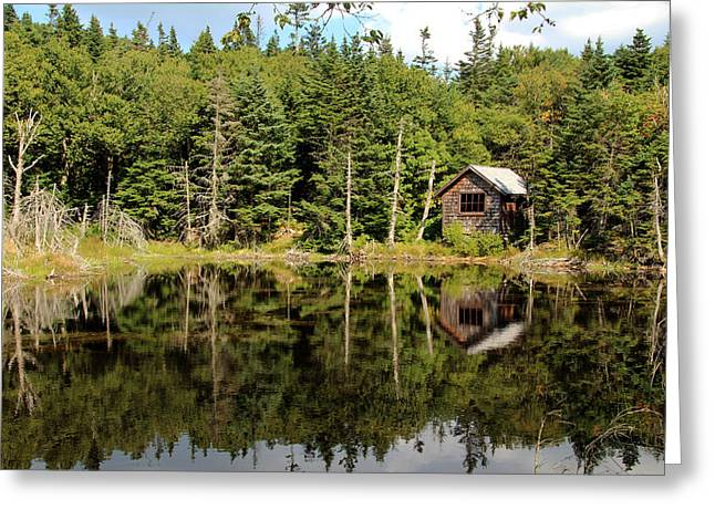Outbuildings Greeting Cards - Pond along the AT Greeting Card by Jemmy Archer