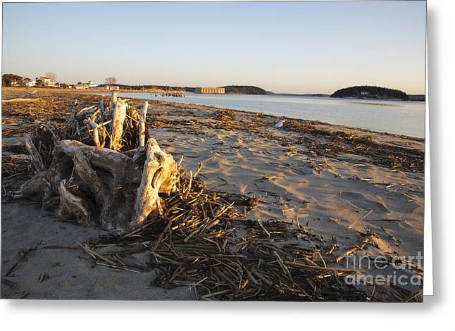 Fort George Greeting Cards - Popham Beach State Park - Phippsburg Maine USA Greeting Card by Erin Paul Donovan